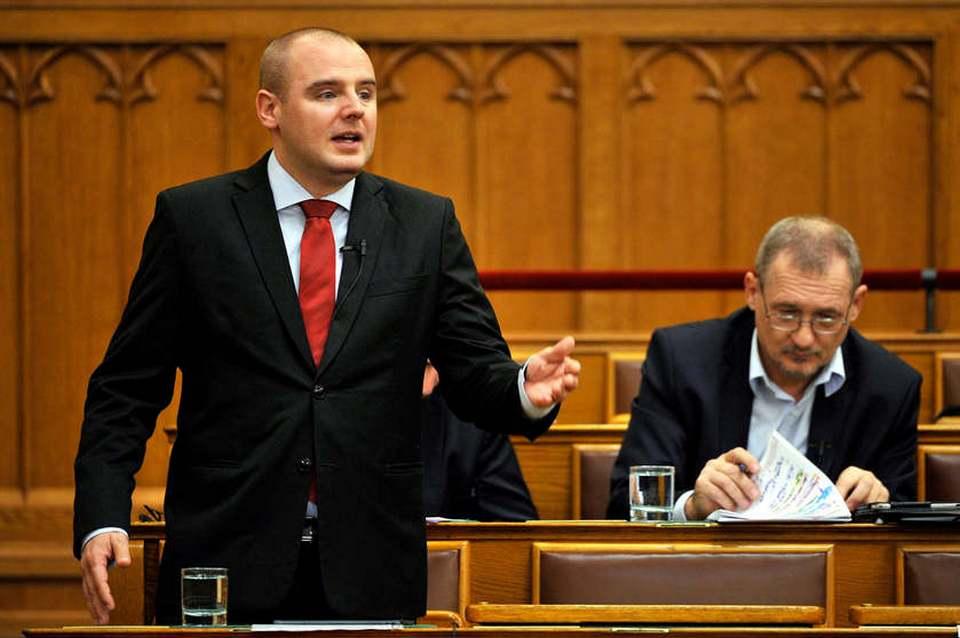 Hungarian Politician 1